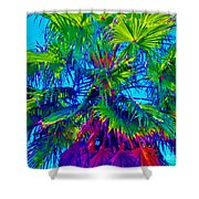 Palmetto Number 3 Shower Curtain