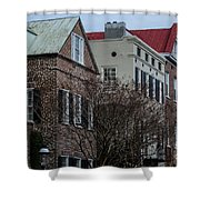 Palmetto Tin Roofs Shower Curtain