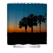 Palms At Clear Dawn Shower Curtain