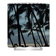 Palms At Dusk Shower Curtain