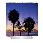 Palms At Sunrise Shower Curtain