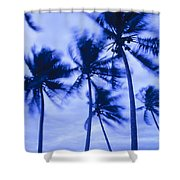 Palms In Storm Wind-bora Bora Tahiti Shower Curtain