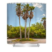 Palms Of Paradise Shower Curtain