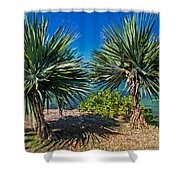 Palms On The Beach. Mauritius Shower Curtain