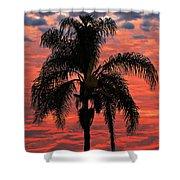 Palmtree Apocalypse Shower Curtain