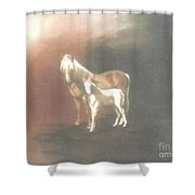 Palomino And Colt Shower Curtain