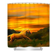 Palomino Pal At Sundown Shower Curtain