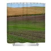 Palouse Patchwork 3 Shower Curtain