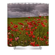 Palouse Poppies Shower Curtain