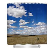 Palouse Skies Shower Curtain