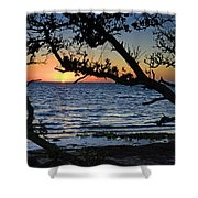 Pamlico Sound Through The Trees Shower Curtain