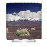 Pampas Grass And Old Lava Flow Llaima Shower Curtain