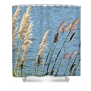 Pampas On The Lake Shower Curtain
