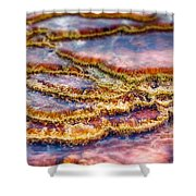 Pancakes Hot Springs Shower Curtain