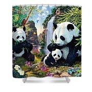 Panda Valley Shower Curtain