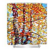 Panoply Shower Curtain by Mandy Budan