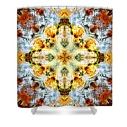 Panorama Carina Nebula V Shower Curtain