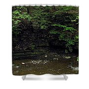 Panorama Of Wolf Creek At Letchworth State Park Shower Curtain
