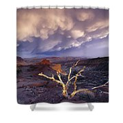 Panorama Point Shower Curtain