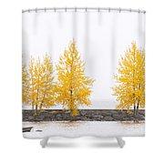 Panorama Tree Shower Curtain