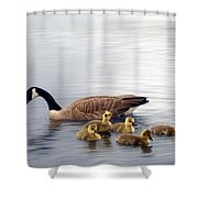 Panoramic Goose Family Outing Shower Curtain
