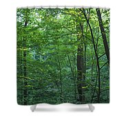 Panoramic Shot With Green Trees Shower Curtain