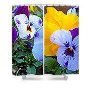 Pansies In Stereo Shower Curtain