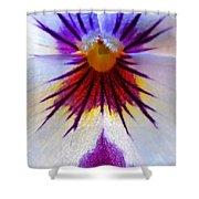 Pansy Abstract 1 Shower Curtain
