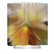 Pansy Art Shower Curtain