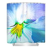 Pansy Flower 6 Shower Curtain