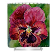 Pansy Play Shower Curtain