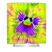 Pansy Power 59 Shower Curtain