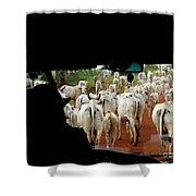Pantenal Cows Shower Curtain