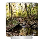 Panther Branch In Fall Shower Curtain