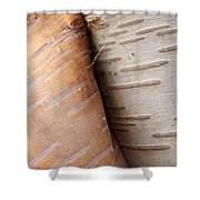 Paper Birch Bark Shower Curtain