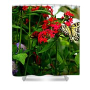Paper Kite Butterfly II Shower Curtain