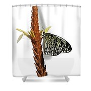 Paper Kite Shower Curtain
