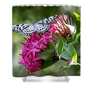 Paper Kite On Fluid Blossoms Shower Curtain