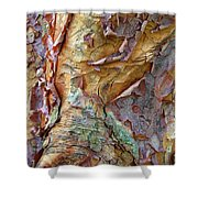 Paperbark Abstract Shower Curtain