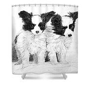 Papillon Puppies Shower Curtain
