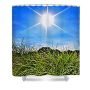 Papyrus In The Sun Shower Curtain