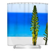 Paradise.... Shower Curtain