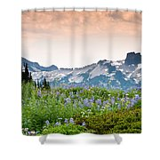 Paradise Meadows And The Tatoosh Range Shower Curtain