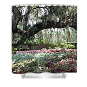 Paradise Perceived Shower Curtain
