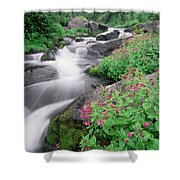 Paradise River And Spring Wildflowers Shower Curtain