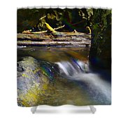 Paradise Whispers  Shower Curtain