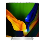 Pardise Birds Shower Curtain