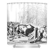 Paris Fete, 16th Century Shower Curtain