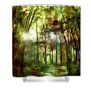 Park Art V Shower Curtain