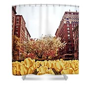 Park Avenue In The Spring  Shower Curtain